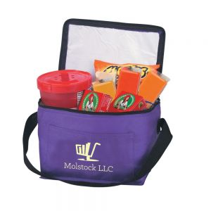 Purchase in Bulk Non-Woven Insulated Custom Cooler Bag - 6 Can Print Factory