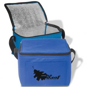 Low Price Non-Woven Promotional Cooler Bag - 6 Can Top Printing Manufacturer