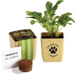 Cheap Produce Custom Flower Pot Herb Set Print Company