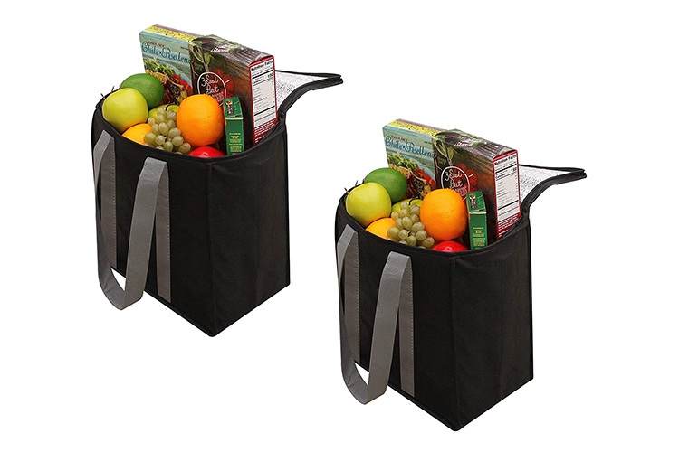 insulated gift bag